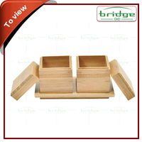 Mini kitchen Bamboo Spice Box