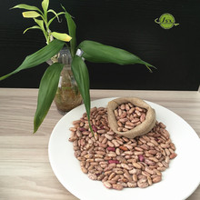 JSX Wholesale price speckled beans red perfect light kidney beans