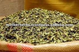 Dried Mint Leaves for herbal tea
