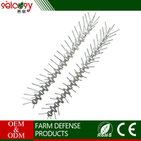 Safety stainless steel user-friendly plastic bird spikes repeller