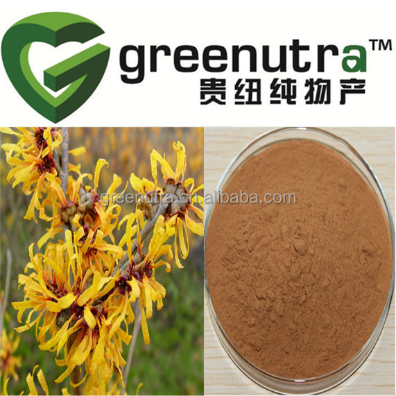 Hot sale Pure Natural Witch Hazel Extract Powder