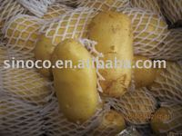 hot sale!!new crop potato!Holland potato!