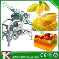 High Quality Low Price Tomato Mango Fruit Orange Peach Strawberry mango pulp making machine