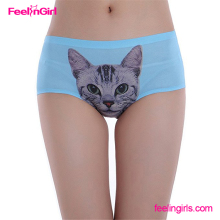 Free Sample NO MOQ Printing Cat Young Girls Underwear Sexy Bra and Panty New Design
