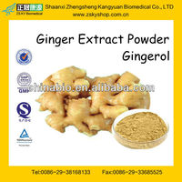 GMP Manufacturer Supply Ginger Rhizome Extract