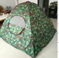 new design family 4 persons camping tent