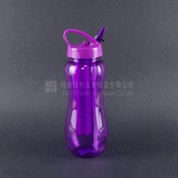 Summer Ice Cube Water Bottle,Summer Cooler Bottle,Tritan/pC 550ML Drink Bottle