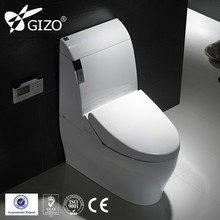 Anus Cleaning ToTo Self Cleaning Bathroom Toilet Automatic Flush Massage Toilet
