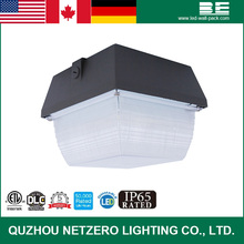 low price retrofit led canopy light with Meanwell diver DLC