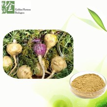 Best Quality Sex Powder For Women Maca Extract