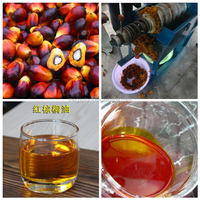 Plam Fruit Oil Presser/Palm Fruit Oil Extraction Machine for sale