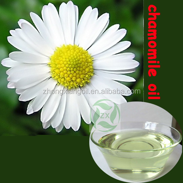 pure chamomile oil,chamomile essential oil bulk