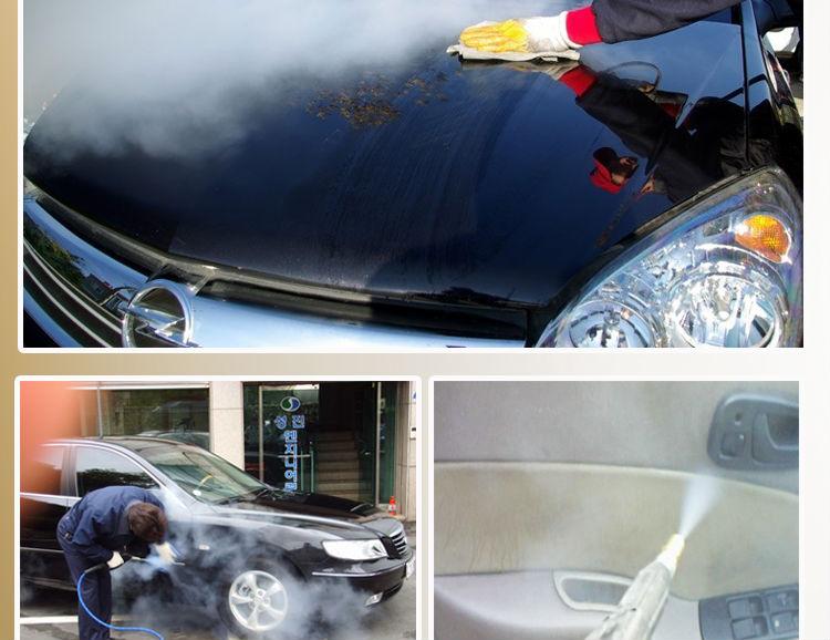 220v 6kw mobile steam car wash machine steam car wash. Black Bedroom Furniture Sets. Home Design Ideas