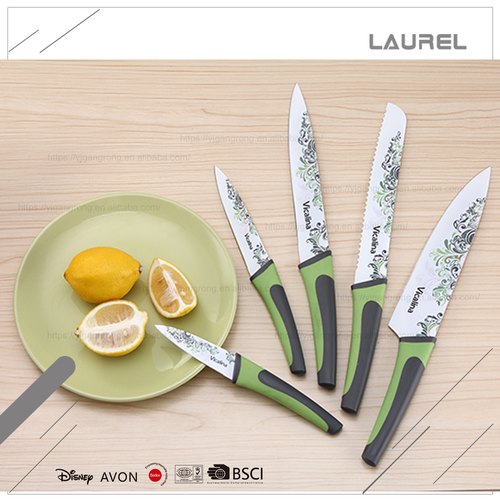 Safe and high quality factory price stainless steel printing blade kitchen fruit knife with PP + TPR handle