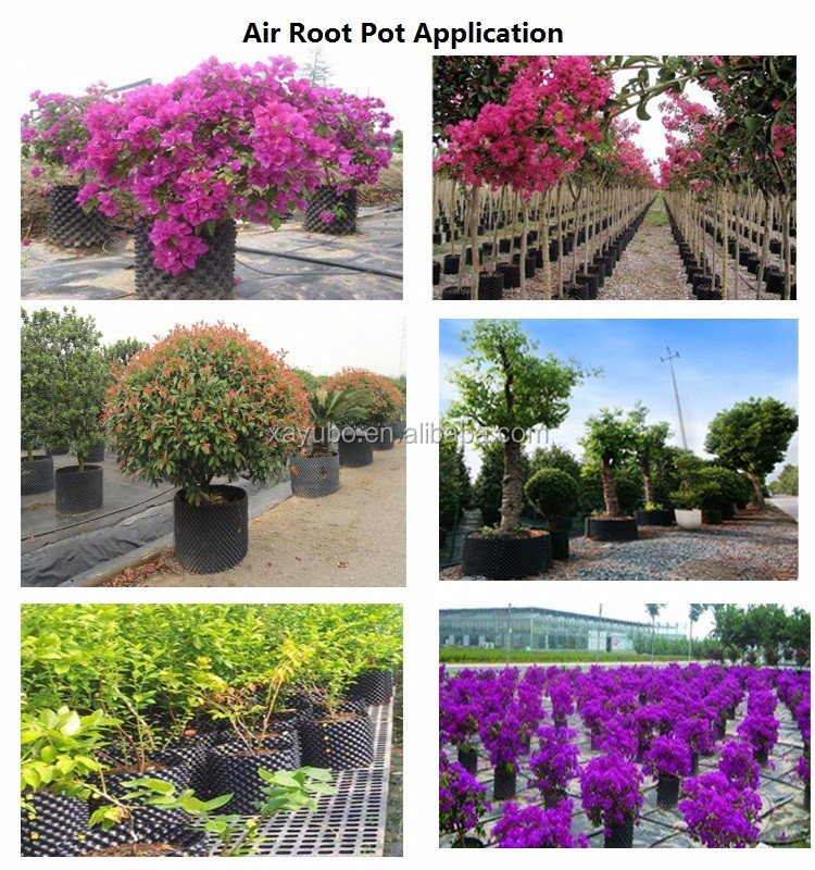 hot sale plastic wholesale price tree root container for air