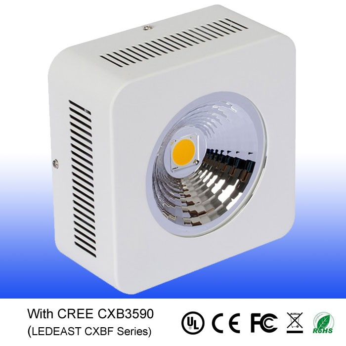 CXB 3590 cob chip 3500k led grow light 100w plant growing lamp with daisy chain