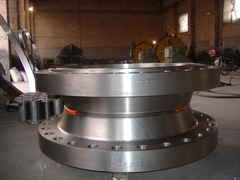 A105 SS400 ST37.2 CT20 304 316 321 Stainless Steel Flange