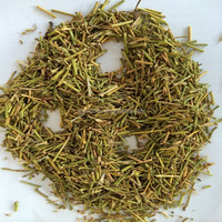 ma huang cao dry leaf medicine ephedra extract powder