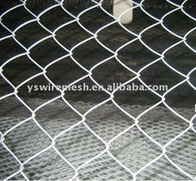 poultry cage/chicken box/hexagonal wire mesh 10