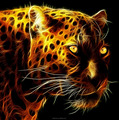 Beautiful and dangerous gold Leopards DIY diamond painting