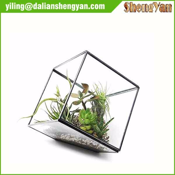 The cube shape planter,geometric glass terrarium