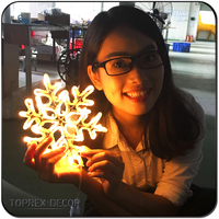 Outdoor christmas decorations led 3d snowflake low voltage led motif rope lights