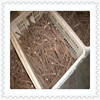 /product-detail/chinese-wholesale-rooted-plant-cuttings-for-planting-60002534716.html