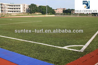 Fed.Intel.Association approved artificial grass in china