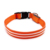 LED dog collar TZ-PET5000 Light up dog collar with double-line round optical fiber Weatherproof, bright colorful light