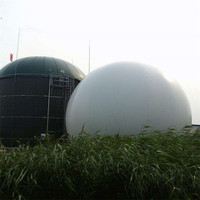 Long Life Biogas Storage Tank With