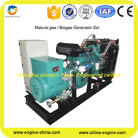 Water cooled 40kw natural gas turbine generator set with Cummins engine
