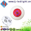 Dual Spectrum LED Grow Light review 90W UFO 90*1W Red/ Blue 8:1 for Seeding Blooming Fruiting with 3 Year Warranty
