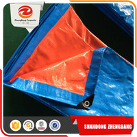 Big/Large Plastic Sheet Blue Pe waterproof Tarpaulin