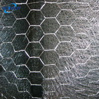 Factory Direct Supply ISO Certificated Galvanized & PVC Coated Hexagona Wire Mesh