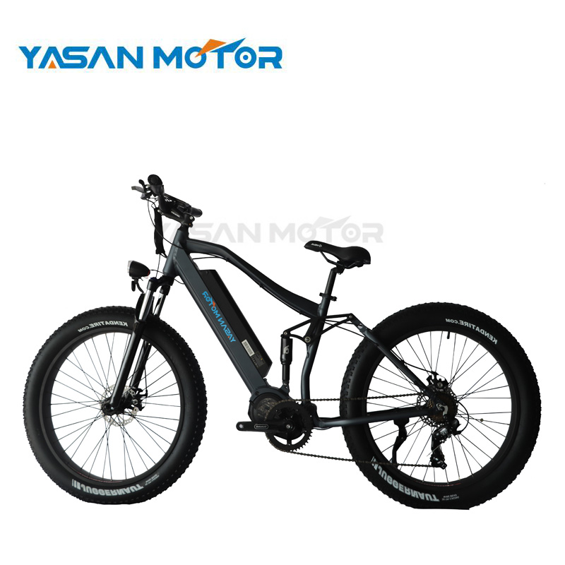 Factory Price 250W XOFO Newest Mountain E Bike With LED Display