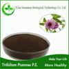 Top quality Red Clover Extract (Trifolium Pratense L. extract) powder