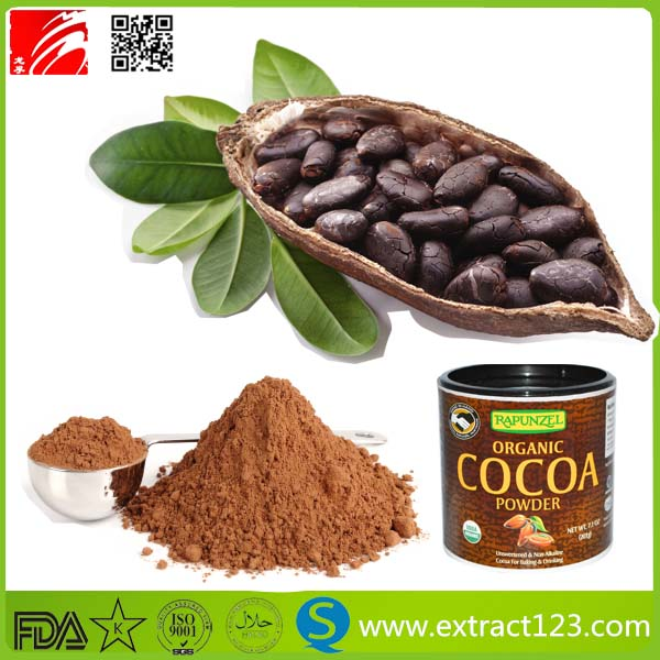 Manufacturer Supply Cocoa Powder For Sale