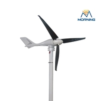 Cheap camping brushless turbines axial wind generator