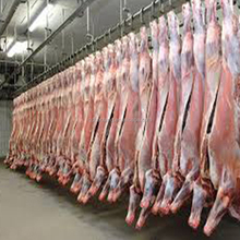 Automatic Complete Abattoir meat rail systems Slauhgterhouse equipment