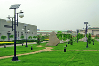 China factory direct sales led solar garden light / solar LED yard lamp