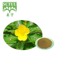 Damiana Leaf Extract For Herbal Sex Medicine / Damiana Extract Powder