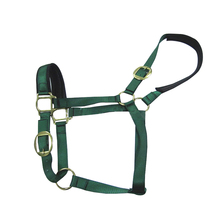 Design Your Own Nylon Horse Collar/Halter Padded With Foam Padded