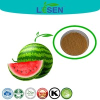 Chinese Plant Extract Manufacturer Supply WaterMelon Extract 10:1, Watermelon Fruit Powder