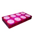 600w HPS Replacement Full Spectrum LED Grow Light for Greenhouse/Medinical Plant