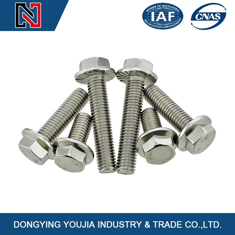 Chinese Customized stainless steel Hexagon flange bolts