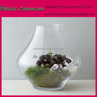 China home garden decorations handblown clear glass bottle terrarium with air plants inside for flower pots