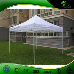 Large Metal Frame Outdoor Canopy,Customized Garden Canopy Tent for Sale
