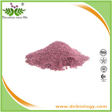 Original herb&Factory supply Bilberry extract