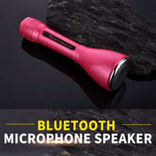 Hottest Portable home KTV karaoke player wireless bluetooth receiver with bluetooth microphone speaker