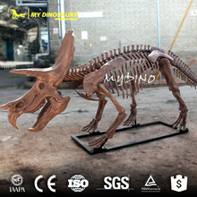 My-dino triceratops fossil dinosaur skeleton replicas exporters it buys sale of fossils